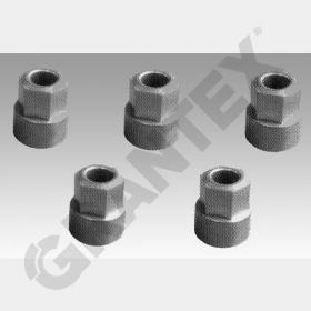 CALIPER REPAIR KIT NUT FOR AXLE SLACK ADJUSTER WITH KNURL SN